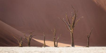 Namibia_Soussvlei_001.jpg