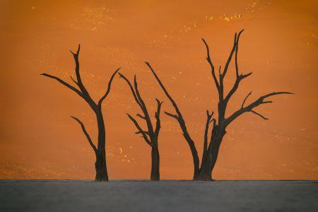 Namibia_Soussvlei_002.jpg