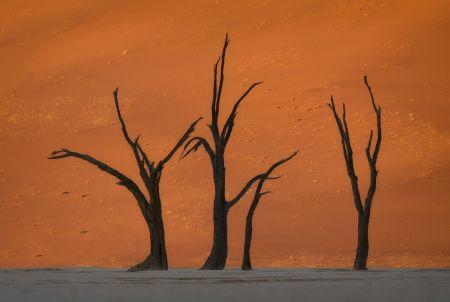 Namibia_Soussvlei_005.jpg