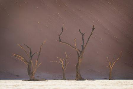Namibia_Soussvlei_007.jpg