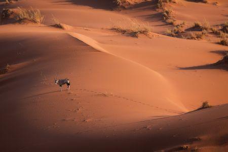 Namibia_Soussvlei_flight_001.jpg